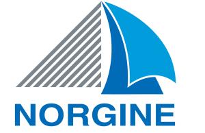 logo_norgine_print